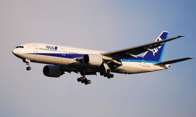 ana avion