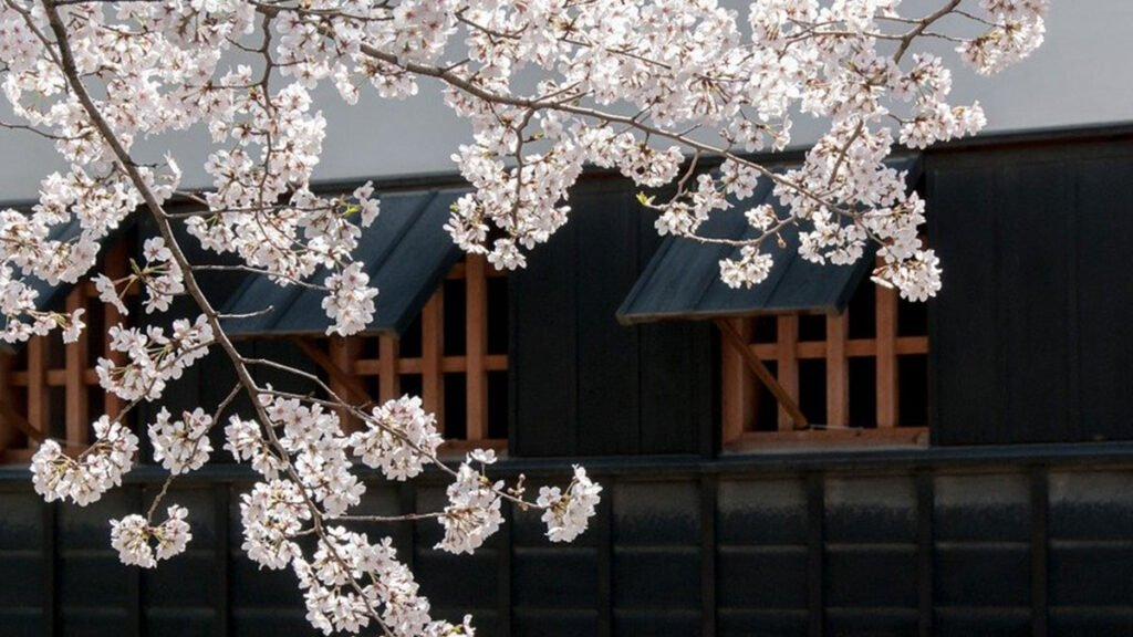 etat urgence japon
