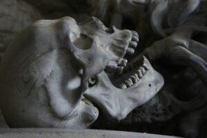skull 476740 1280 scaled