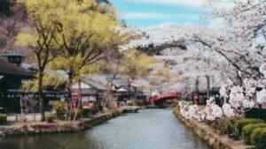 Japon quand voyager